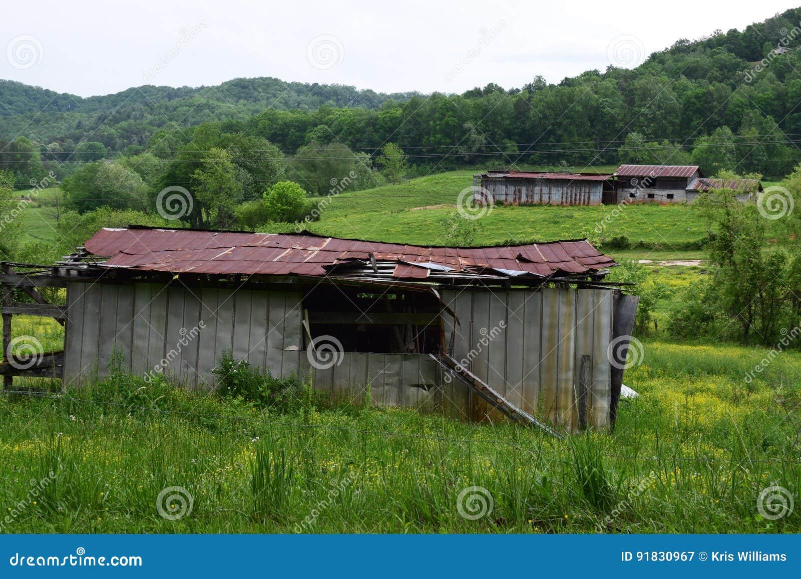 Pasto ocidental e celeiros do NC