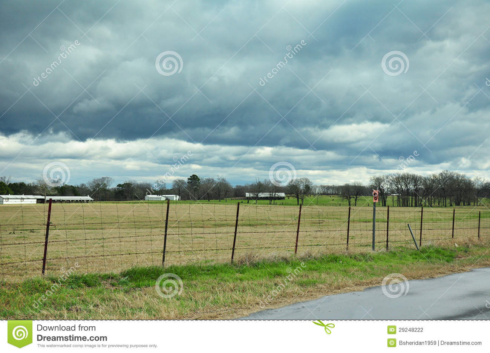 Download Pasto sob céus tormentosos foto de stock. Imagem de campo - 29248222