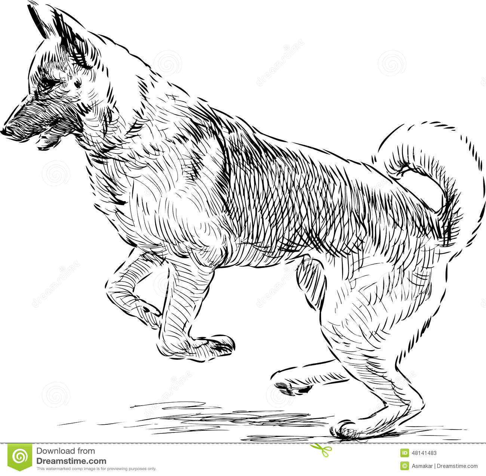 Pastore tedesco in un salto illustrazione vettoriale for Cane da disegnare per bambini