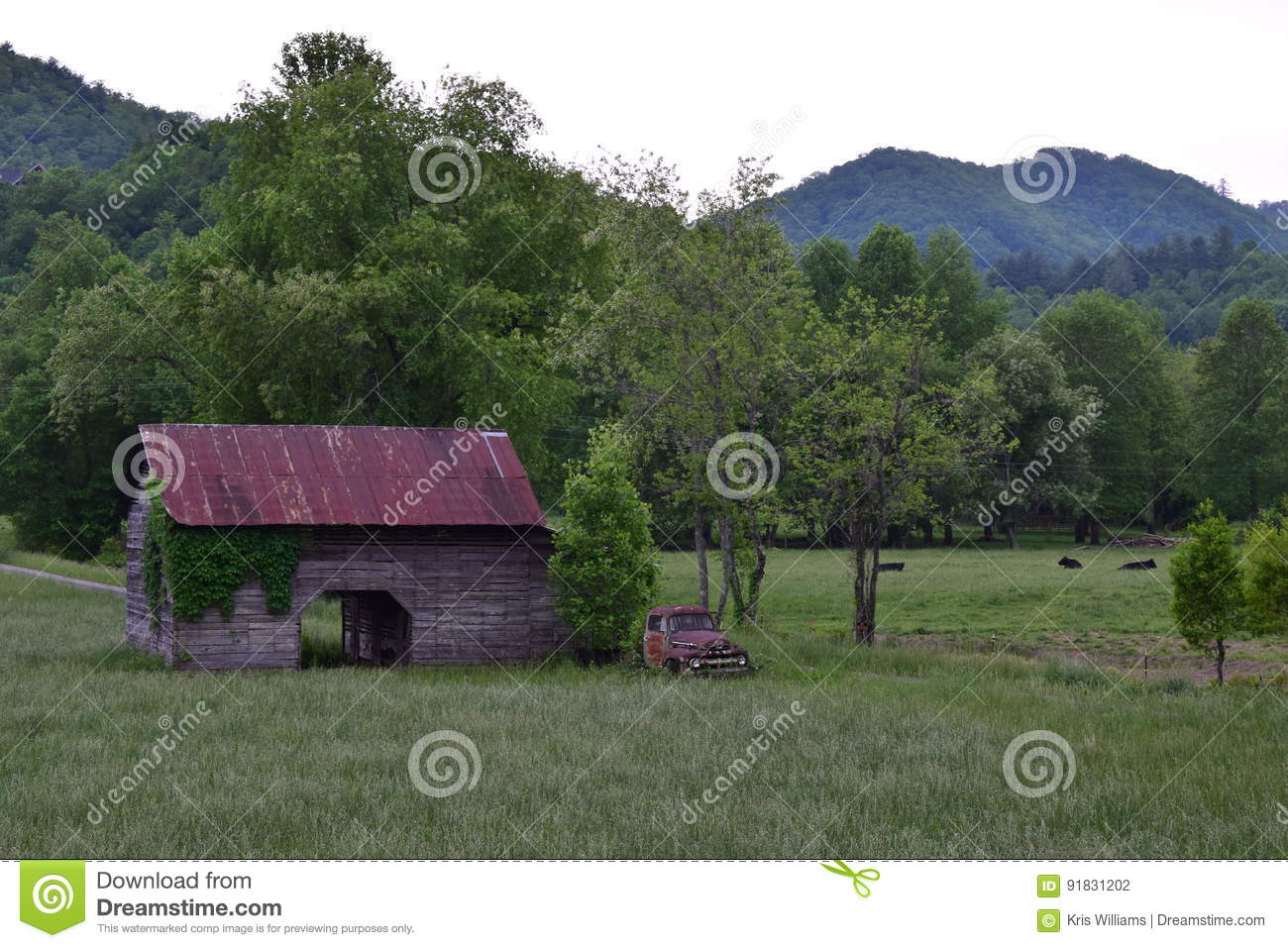 Pasture view with barn, truck, cows, and mountains
