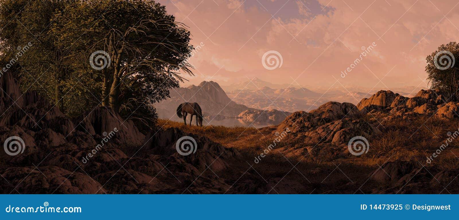 Pastwiskowi końscy południowi zachody