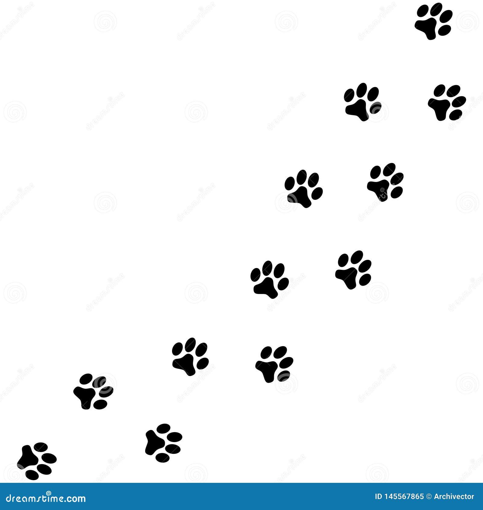 Patas del perro de los rastros