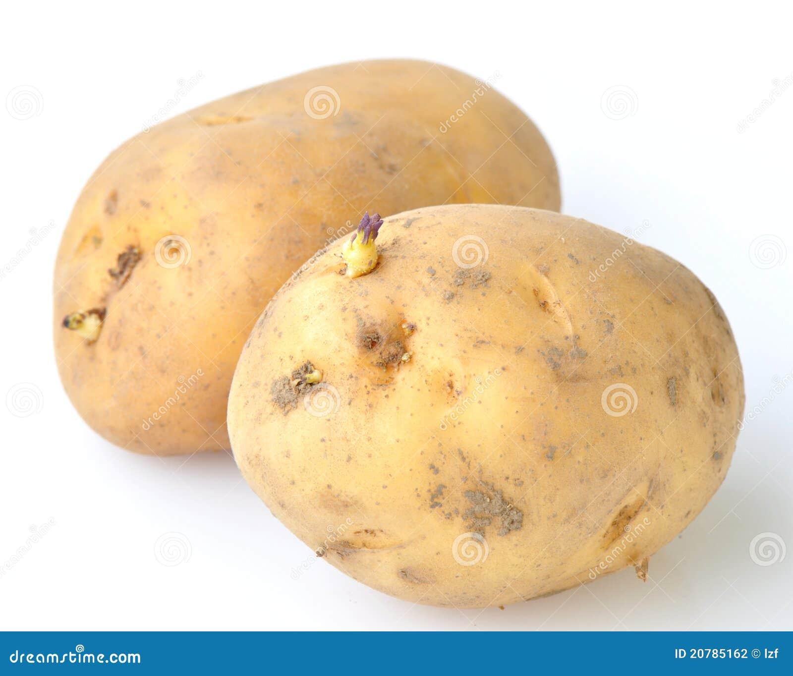 Patata con i germogli