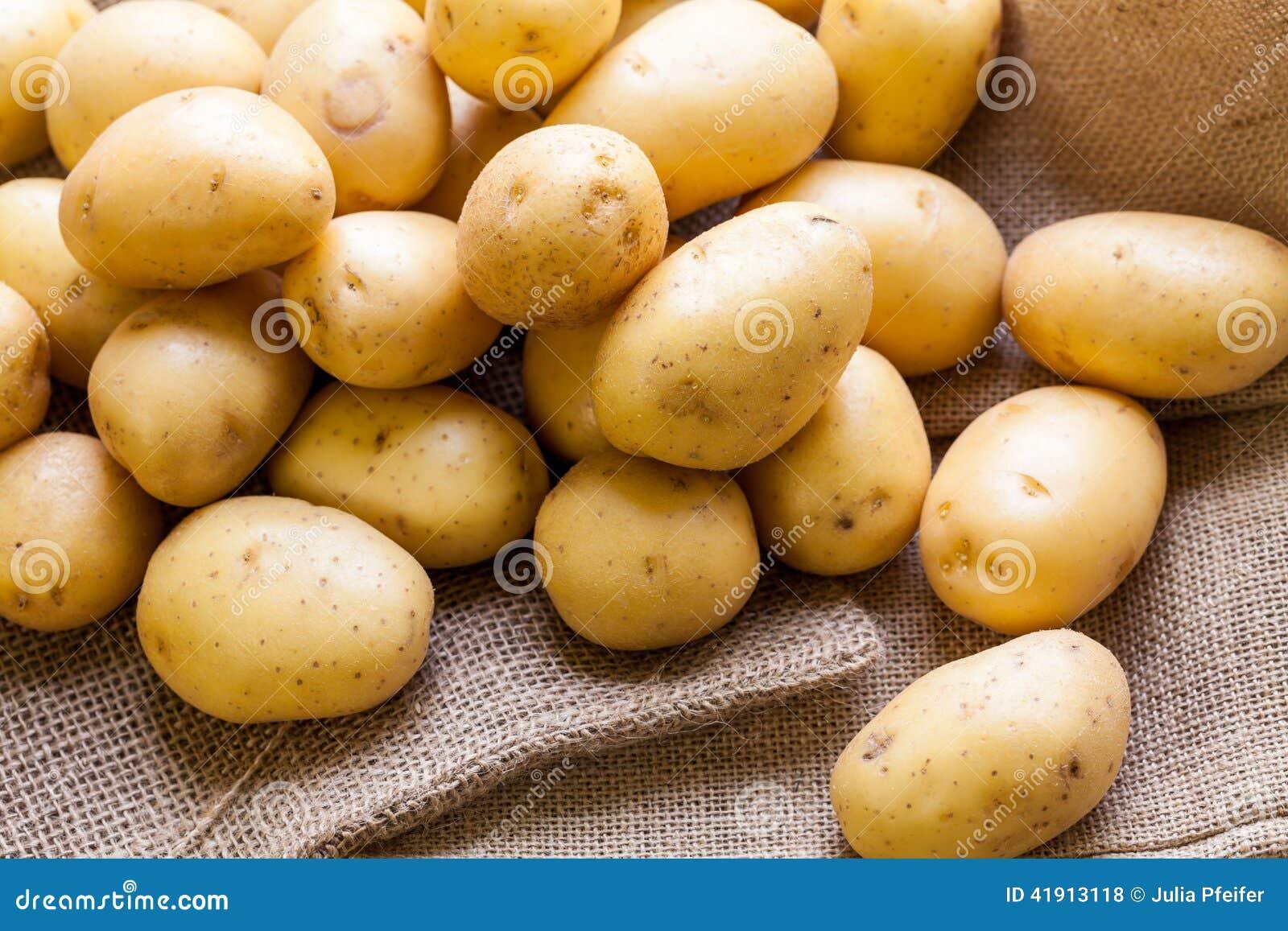 Patatas frescas de la granja en un saco de la arpillera