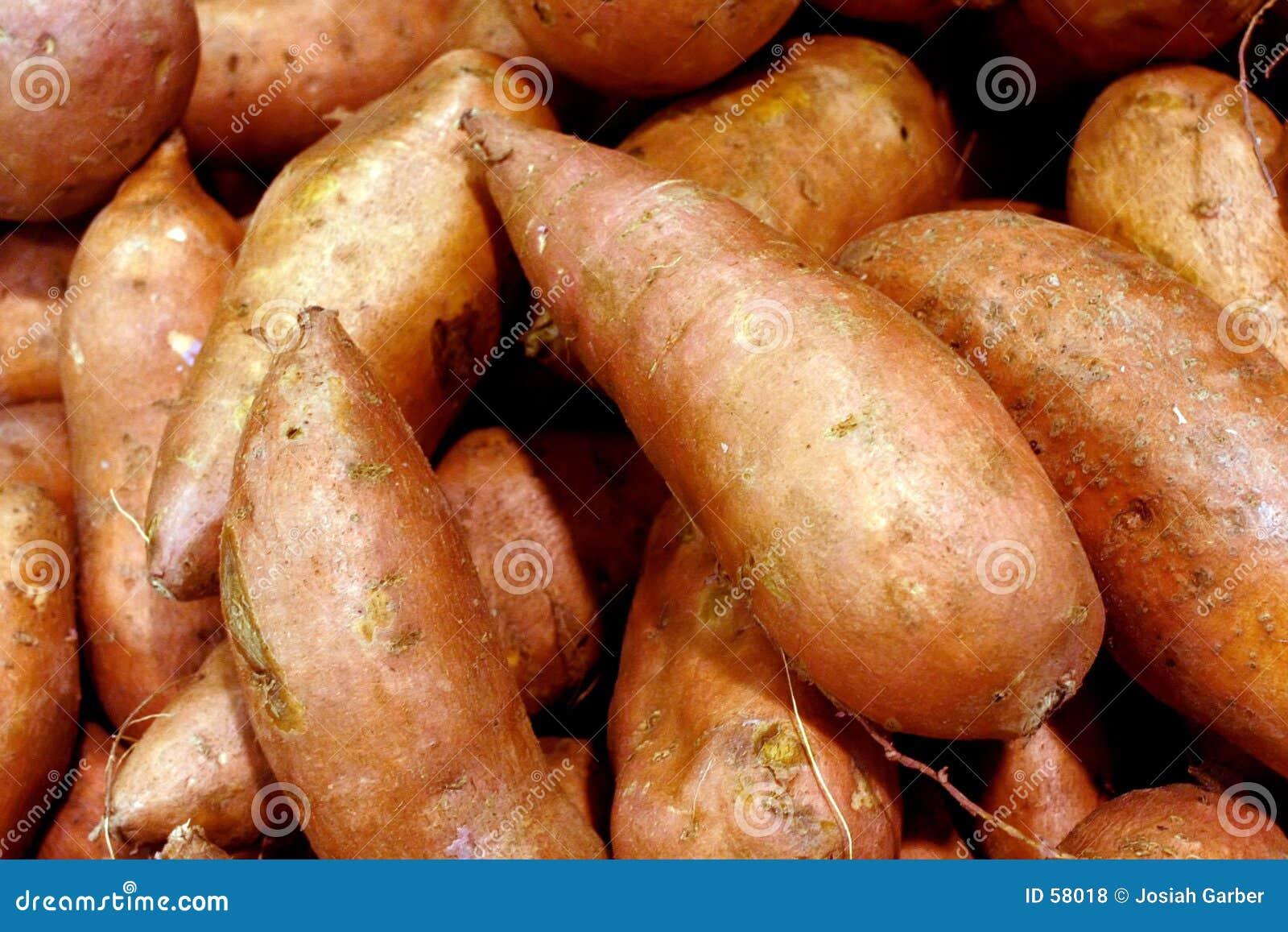 Download Patates douces photo stock. Image du potato, sarcle, exportation - 58018