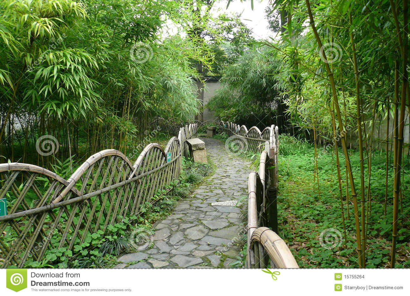 Path Through Bamboo Hurst Stock Images Image 15755264
