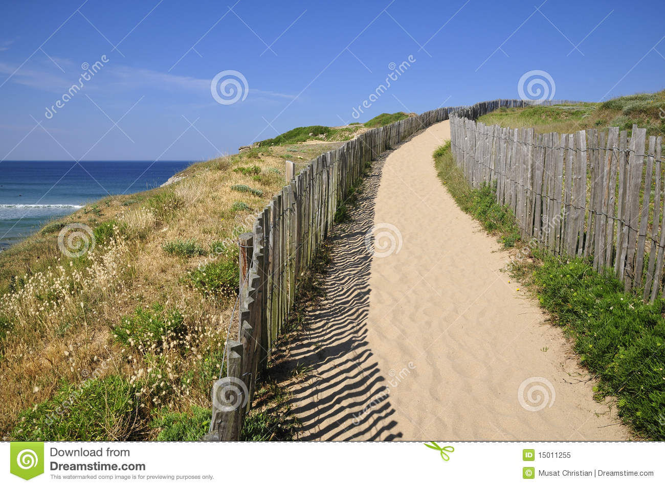 Path in the dunes of Quiberon in france