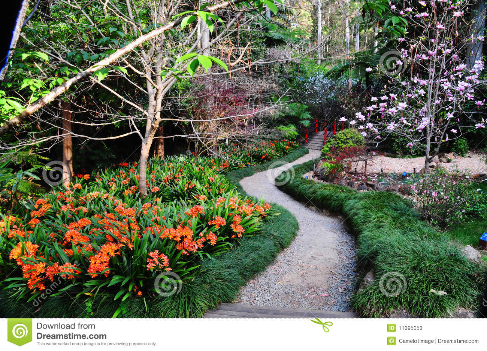 Path Through Japanese Garden In Spring Stock Image Image