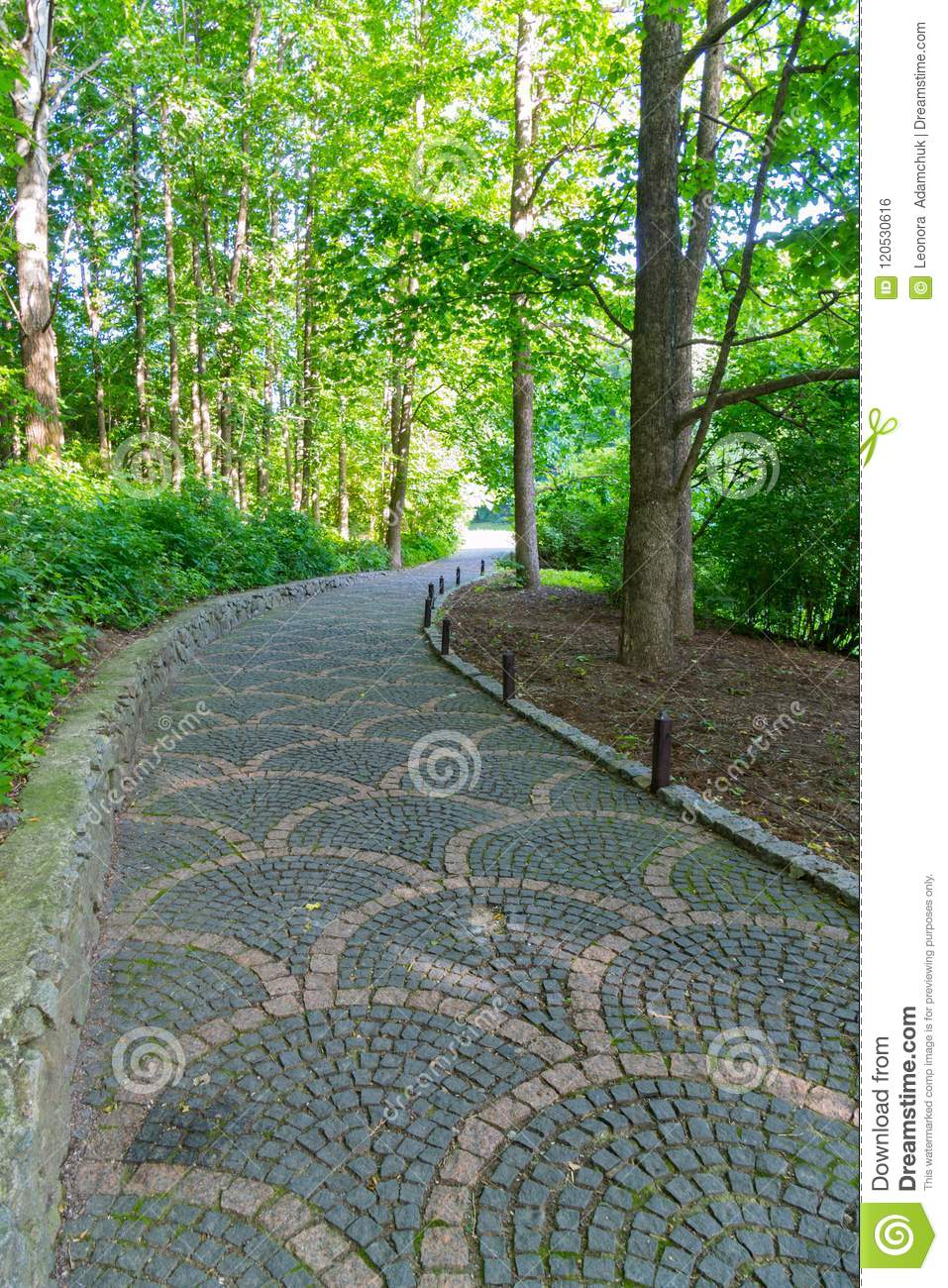The path in the park is paved with a beautiful pattern running between green trees and low lush bushes.