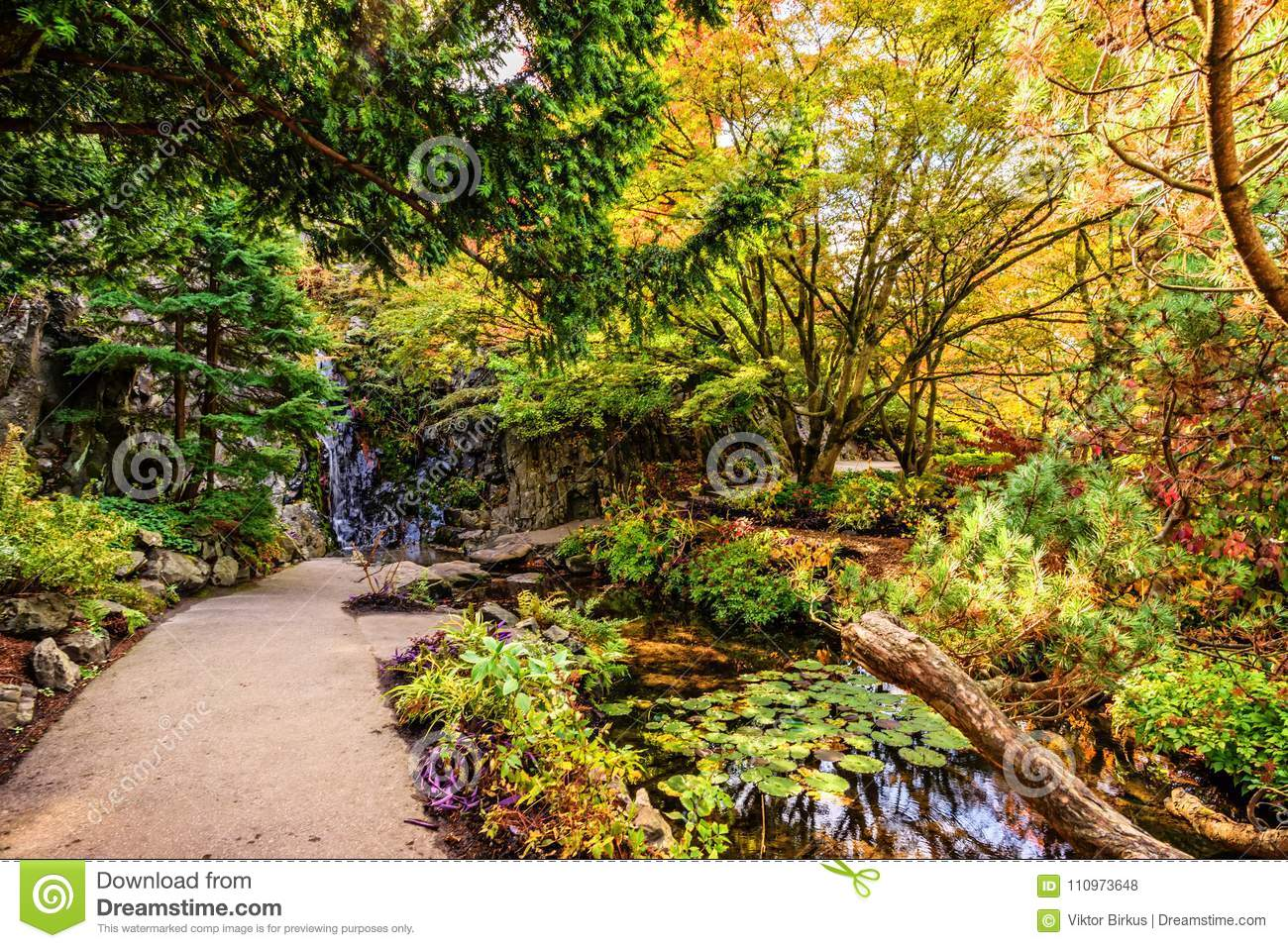 path in a park between a pond and a waterfall near a stone wall, surrounded by the trees