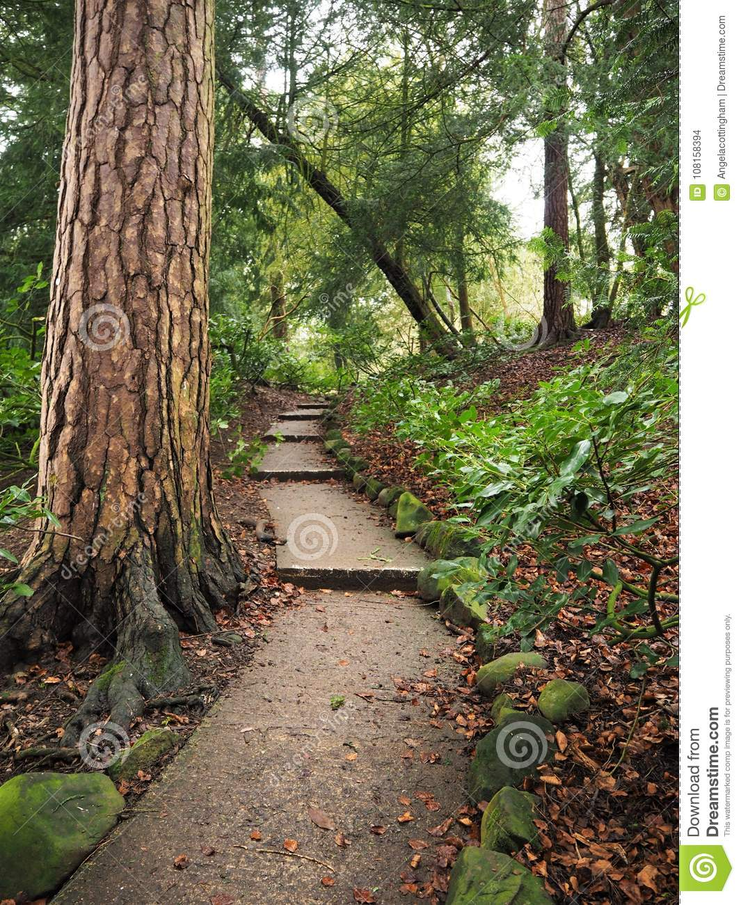 Perfect Winding Path Gardens Image Collection - Brown Nature Garden ...