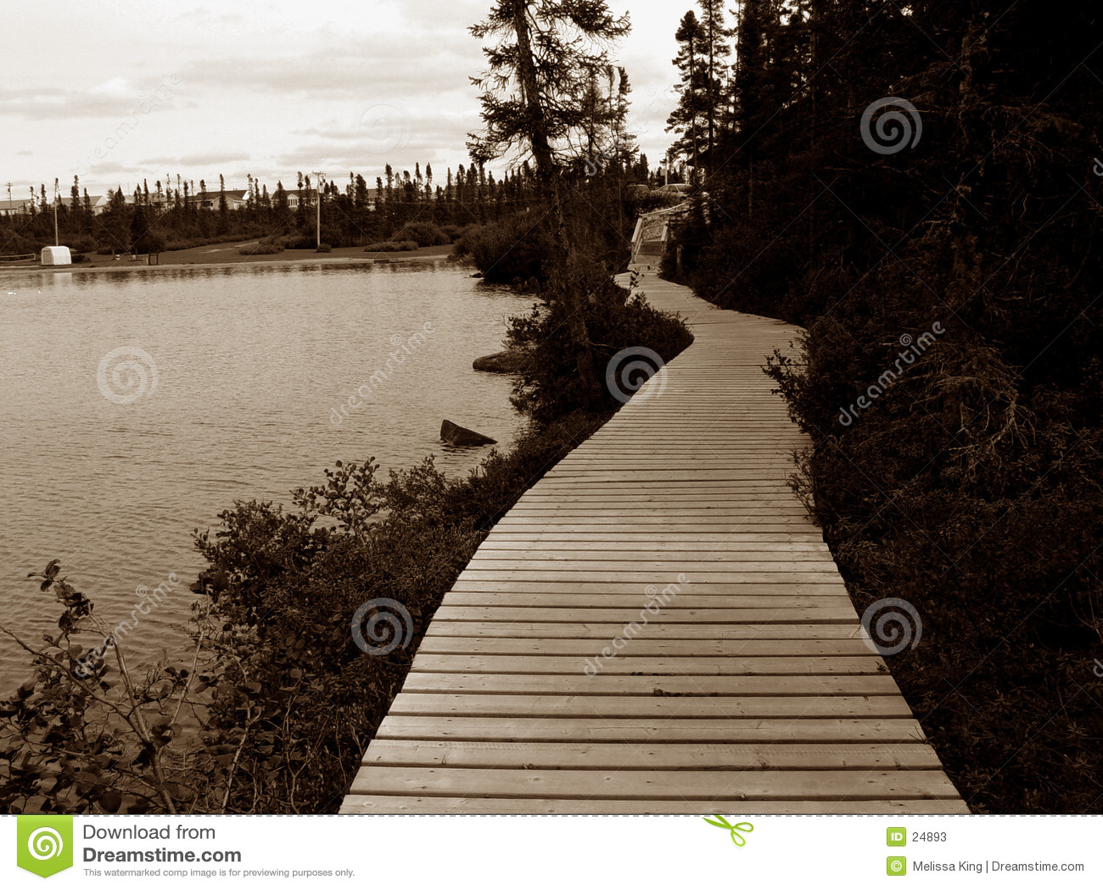 Pathway around Pond