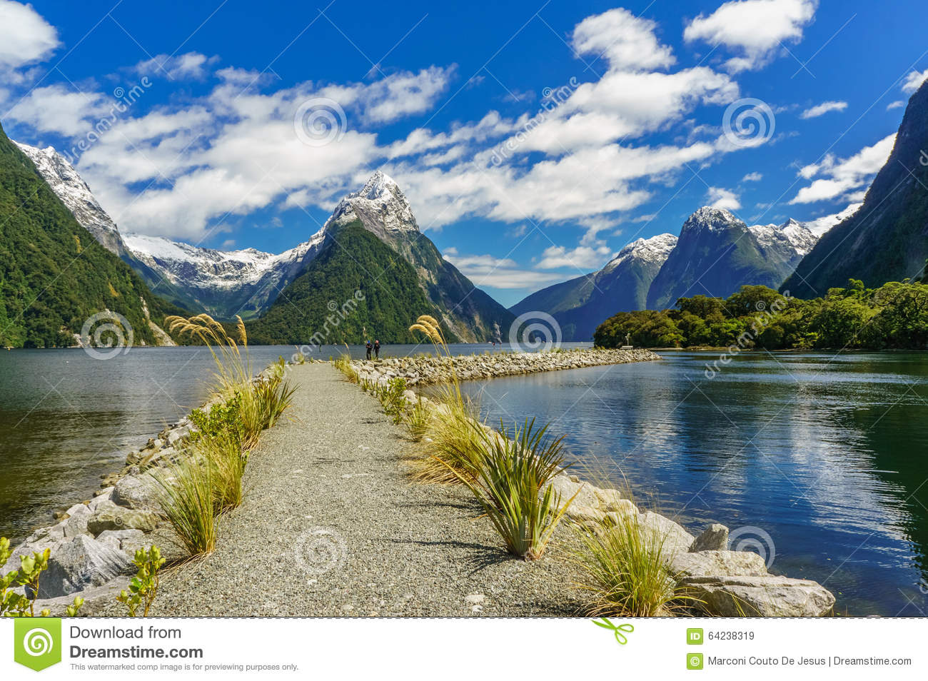 Pathway In The Milford Sound Stock Photo Image 64238319