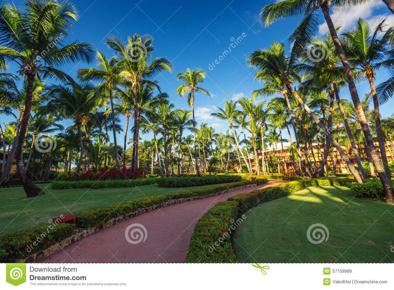 Pathway And Tropical Garden In Beach Resort, Punta Cana Stock Image ...