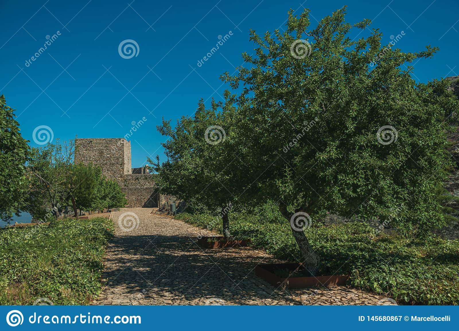 Pathway and wall in a lawn garden with trees at the Marvao Castle
