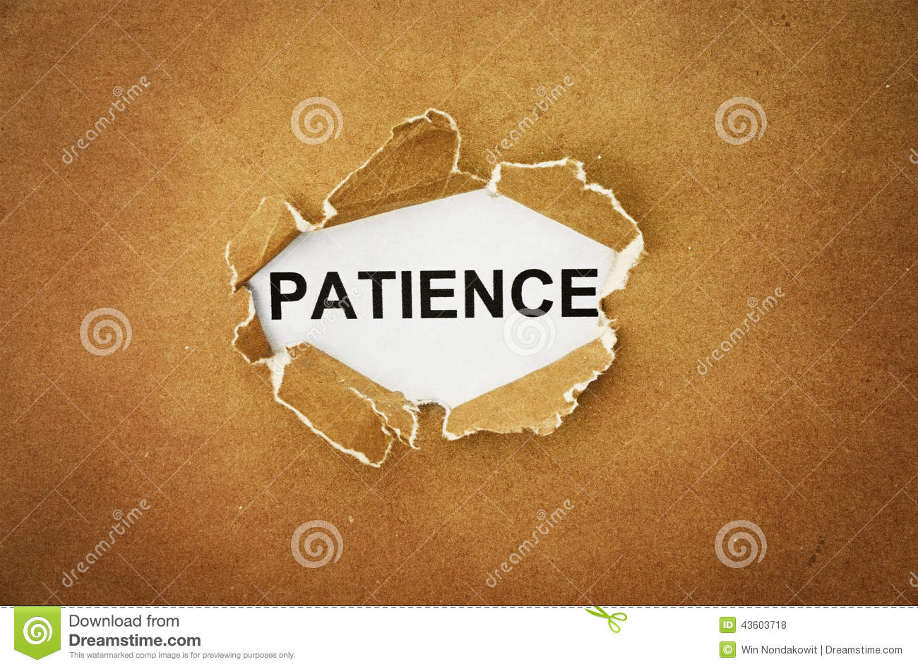 courage and patience essay Care, compassion, competence, communication, courage and commitment   it all with a cheerful patience and calmness alan and emma.