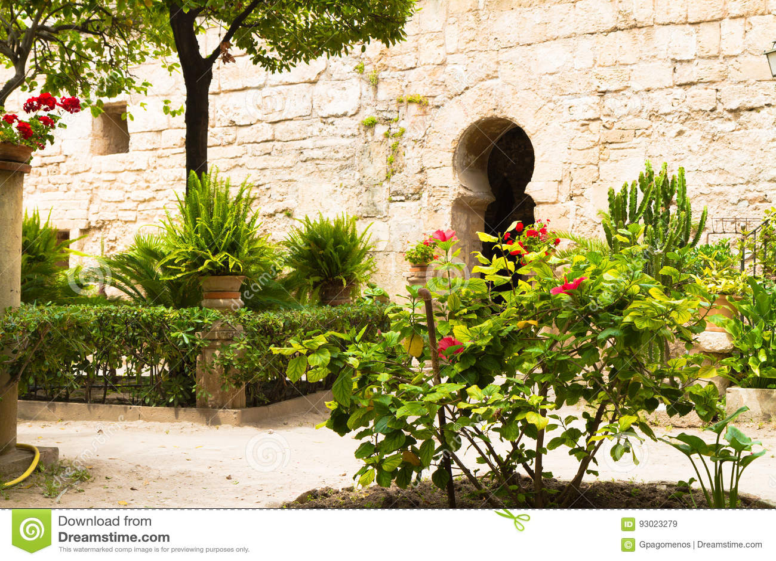 Patio Arabe Exterieur De Jardin De Bains En Palma Mallorca Image - Jardin-arabe