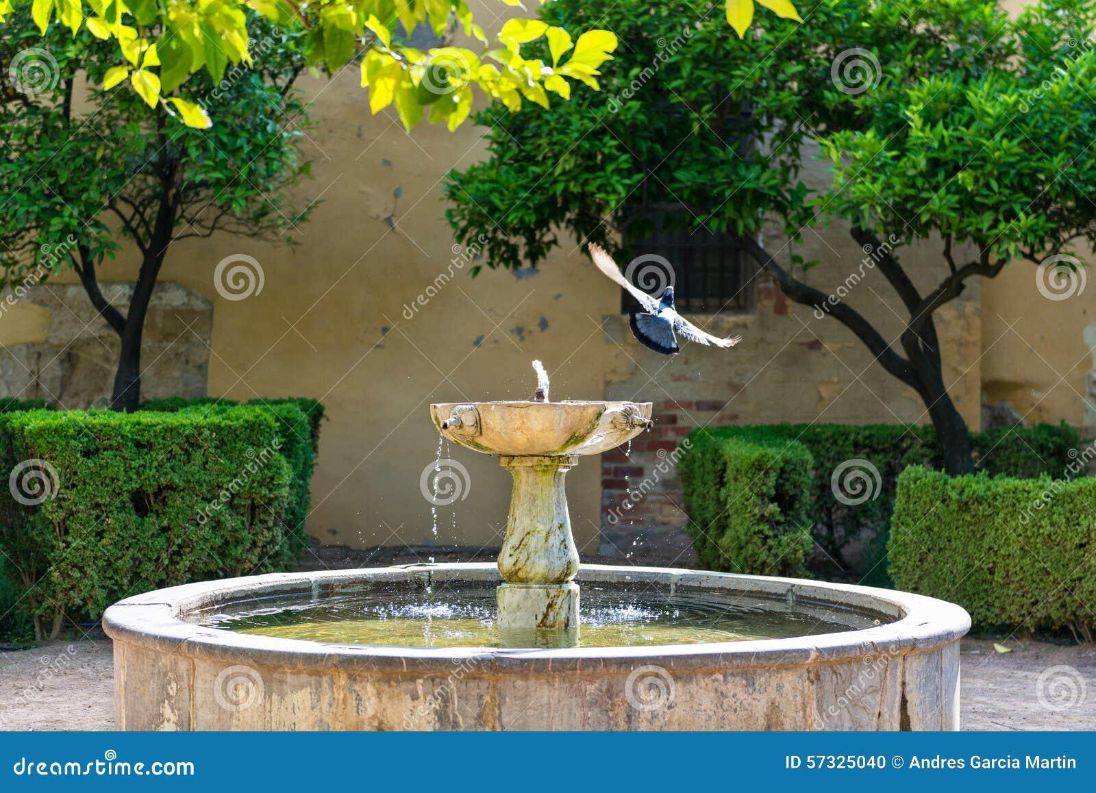 Patio Avec La Fontaine Et Les Oiseaux Photo Stock Image Du