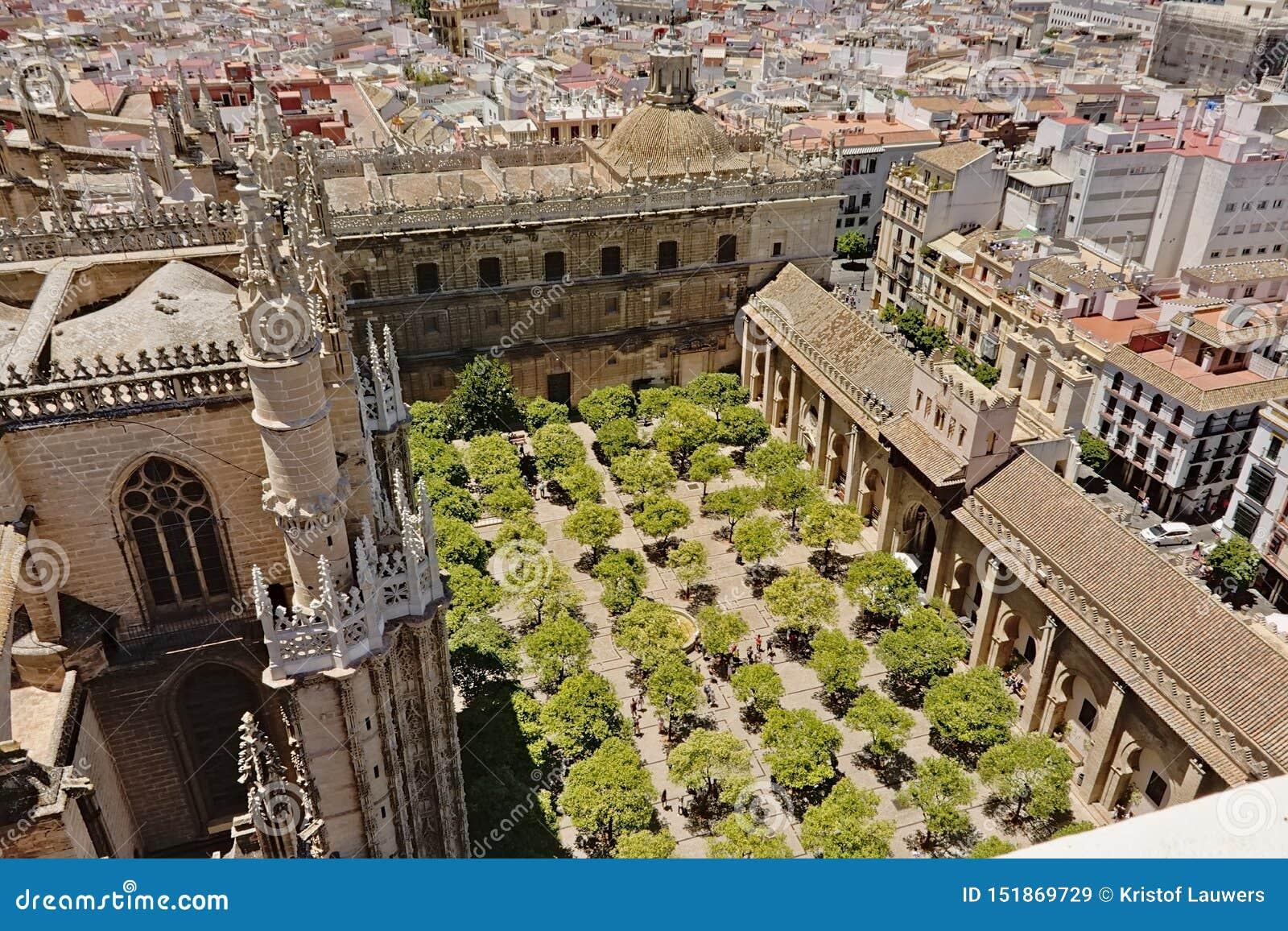 Patio de los Naranjos, cour intérieure avec des arbres de cathédrale de Séville de St Mary de voient