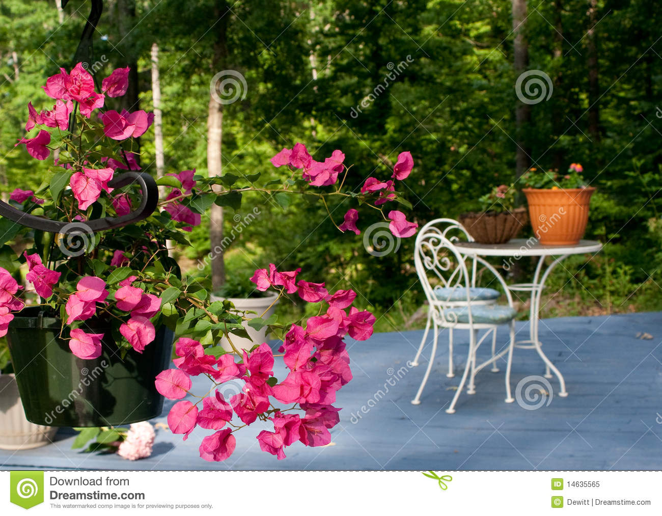 Patio flowers and patio table.