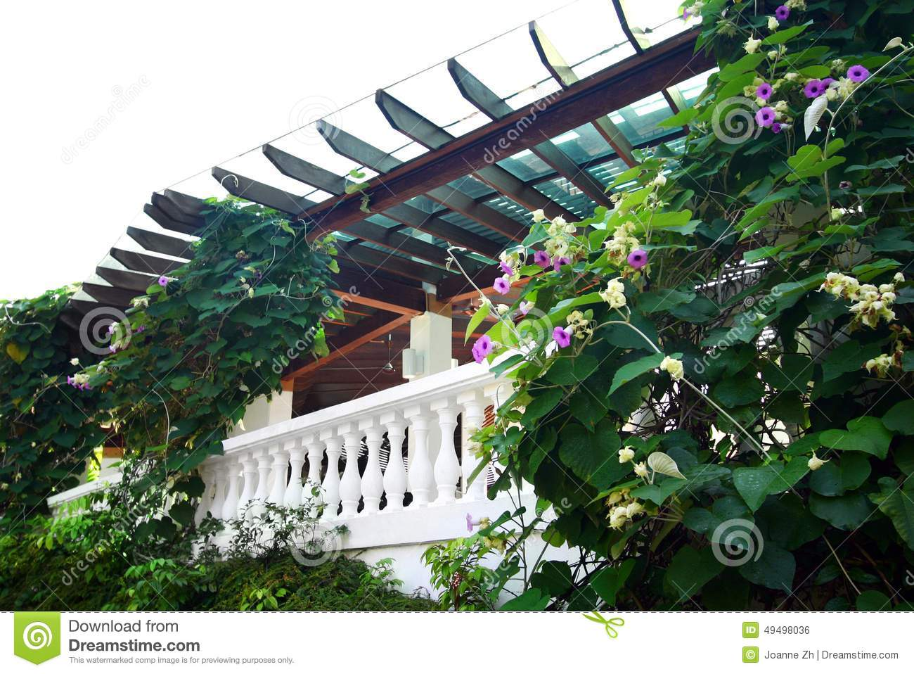 Patio Natural Style Landscaping Plants Stock Photo Image