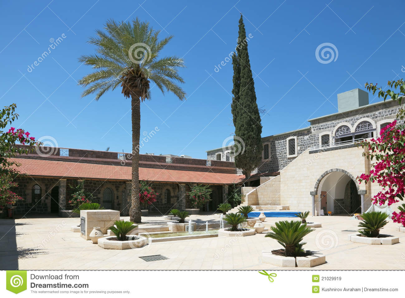 A Patio Palm And Cypress Trees Stock Image Image 21029919
