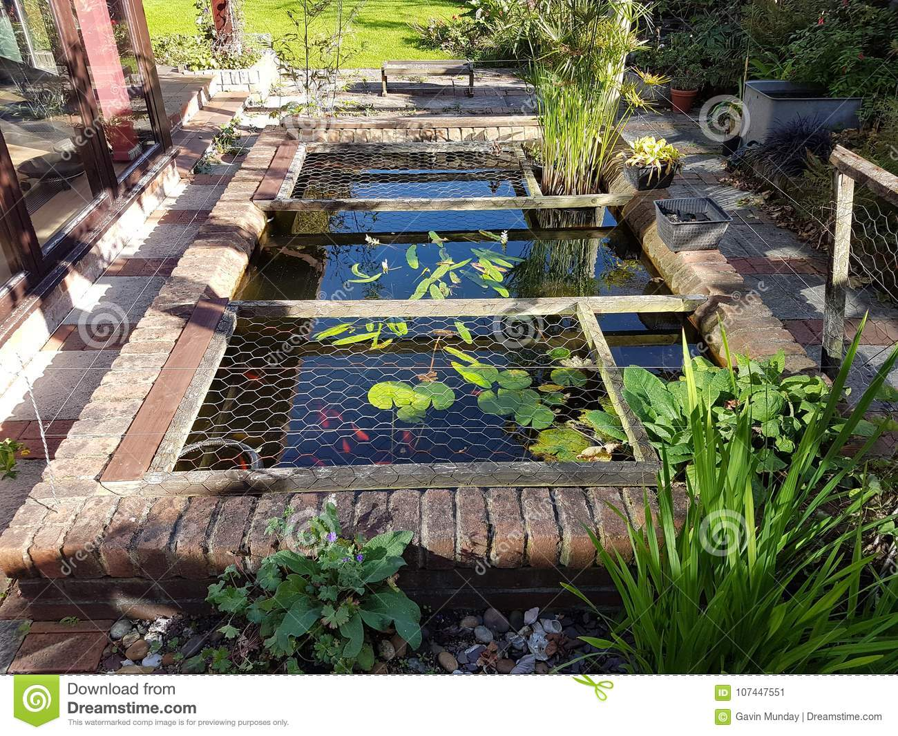 Small garden pond stock image. Image of garden, water
