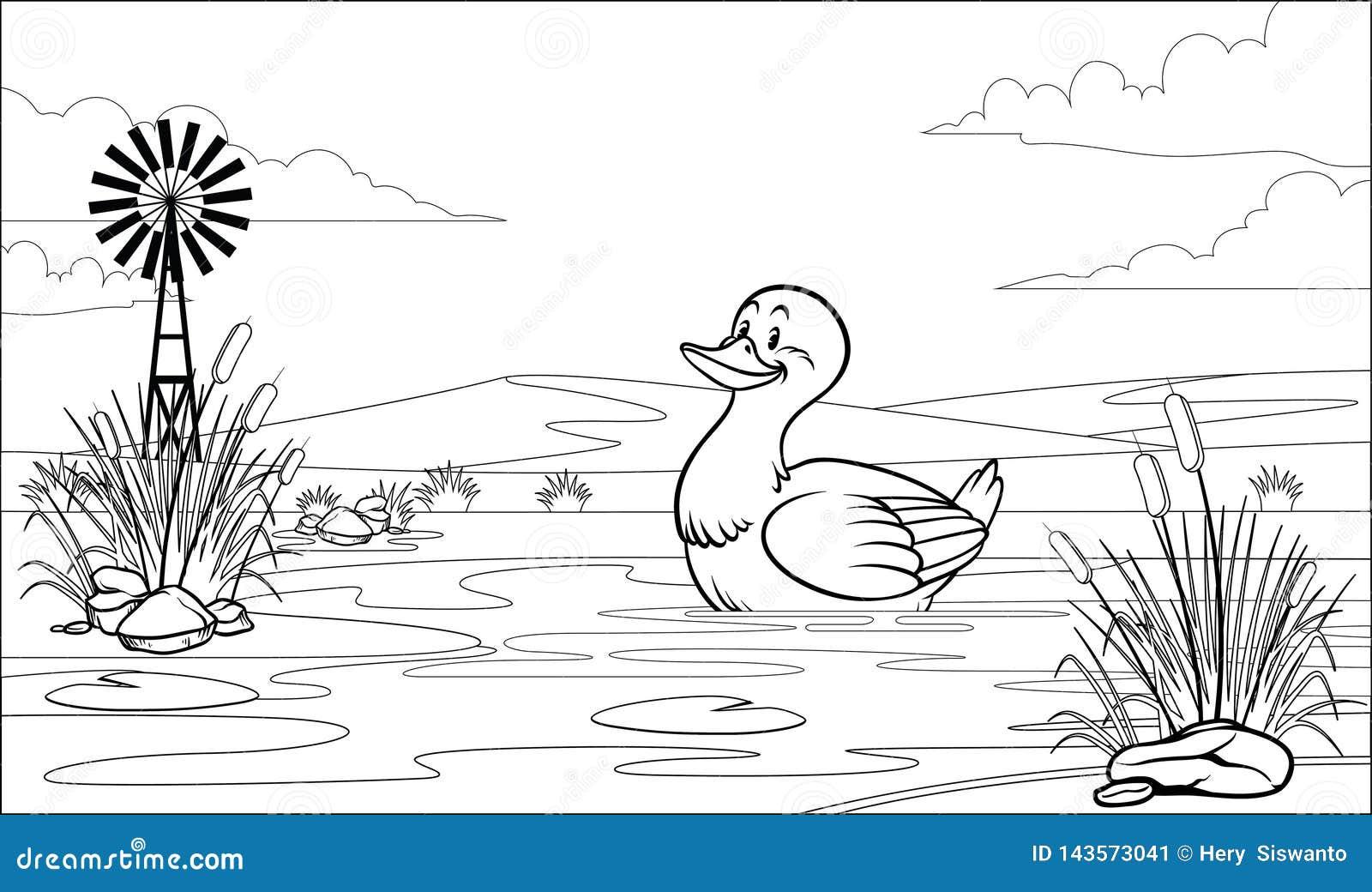 Pato Colorindo Preto E Branco Da Pagina Na Lagoa Ilustracao Do