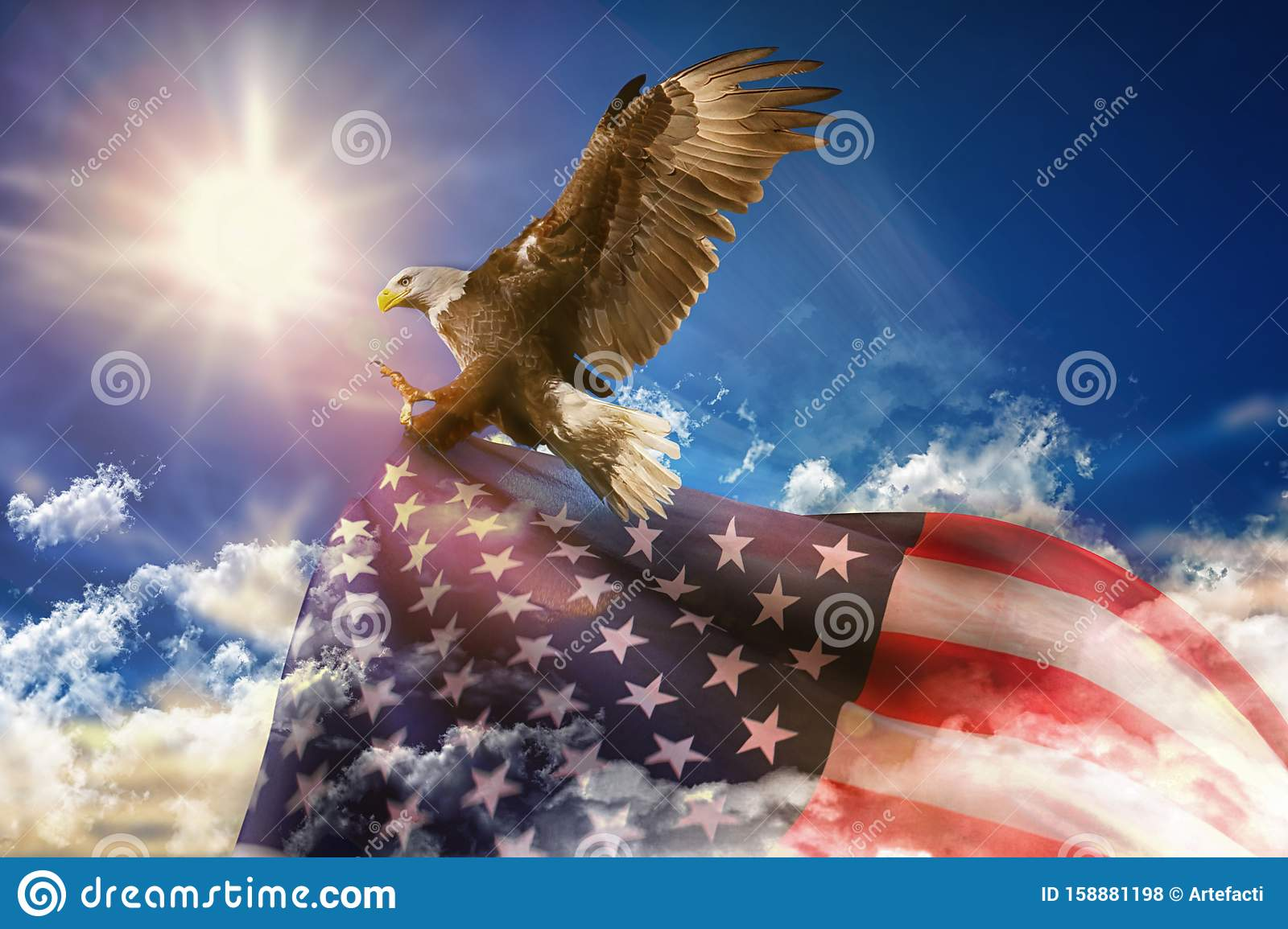 117 145 Eagle Photos Free Royalty Free Stock Photos From Dreamstime