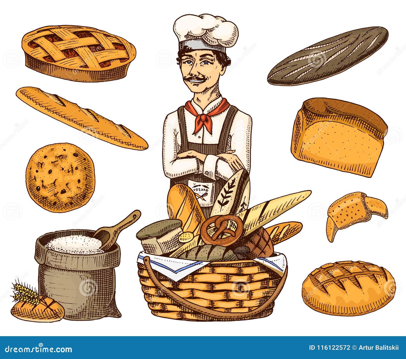 Patron Culinaire, Cuiseur De Chef, Boulanger Dans Le Tablier ...