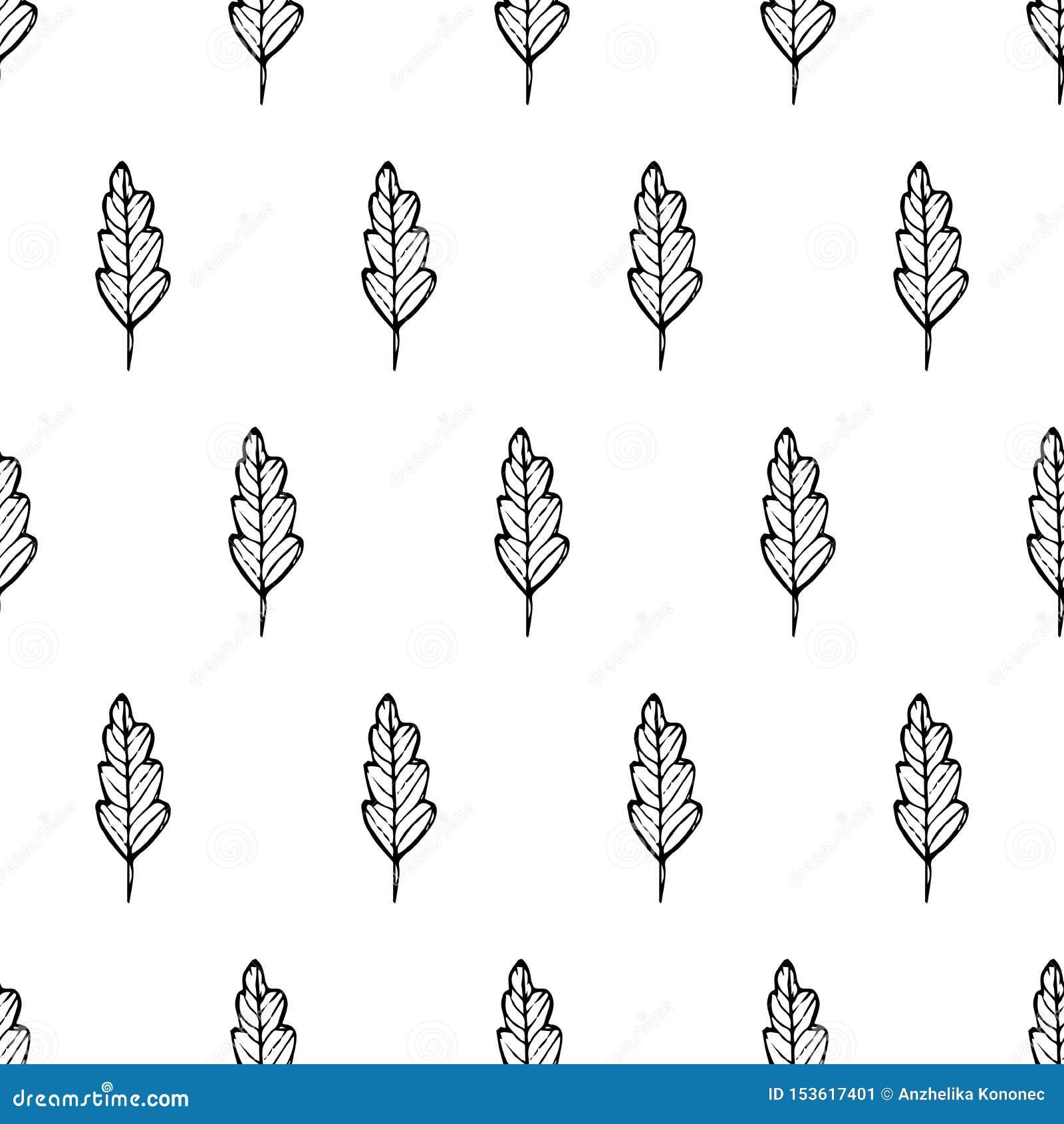 Patroonbladeren in lijnen, zwarte lijnen
