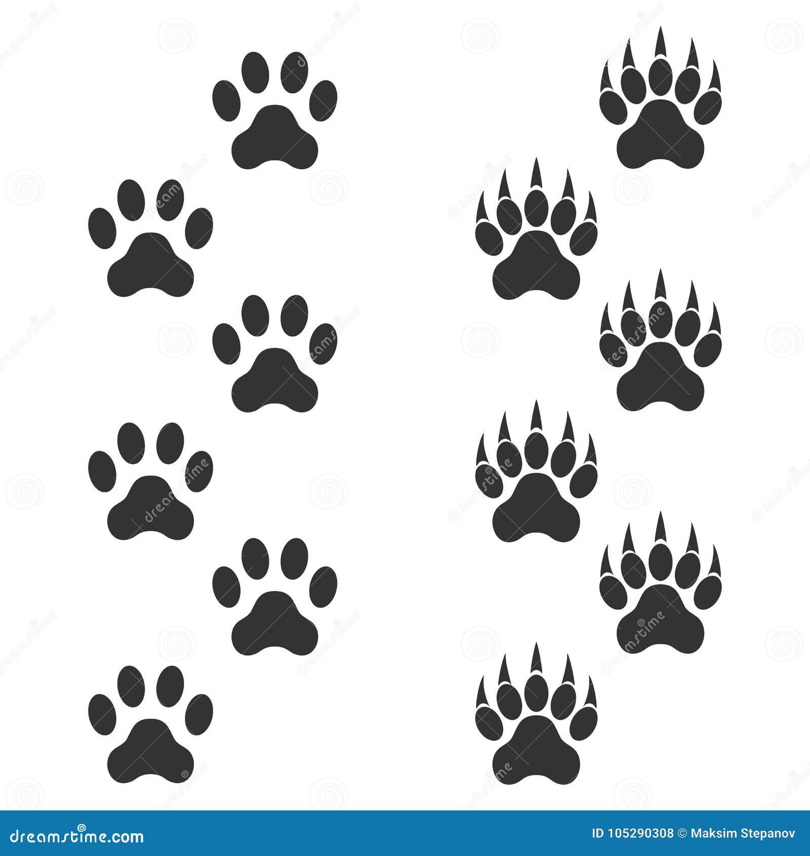 Patte De Chien Et Patte De Tigre Avec Des Griffes Animal De