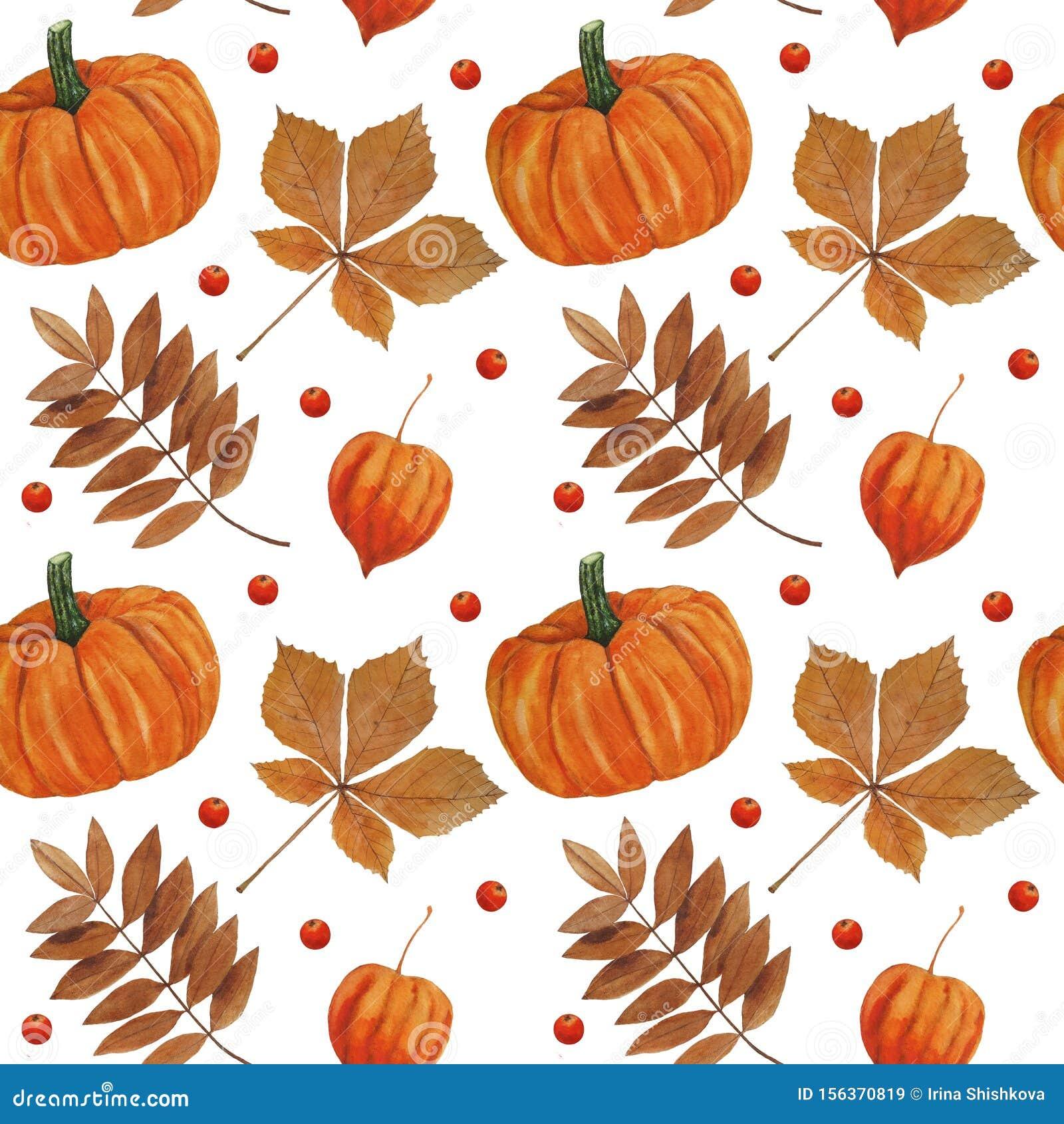 Pattern Autumn Leaves And Pumpkin Illustrations Watercolor Botanical Digital Paper Textile Autumn Autumn Decor Wallpaper Scrapbook Stock Illustration Illustration Of Brown Fall 156370819