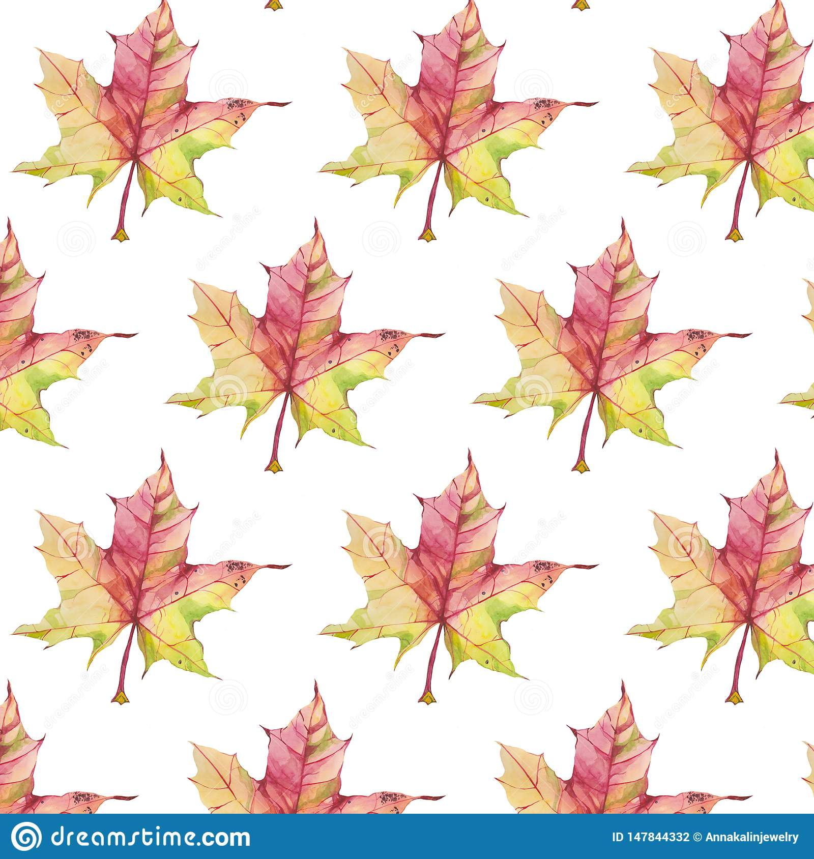 Pattern with autumn maple leaf on white background