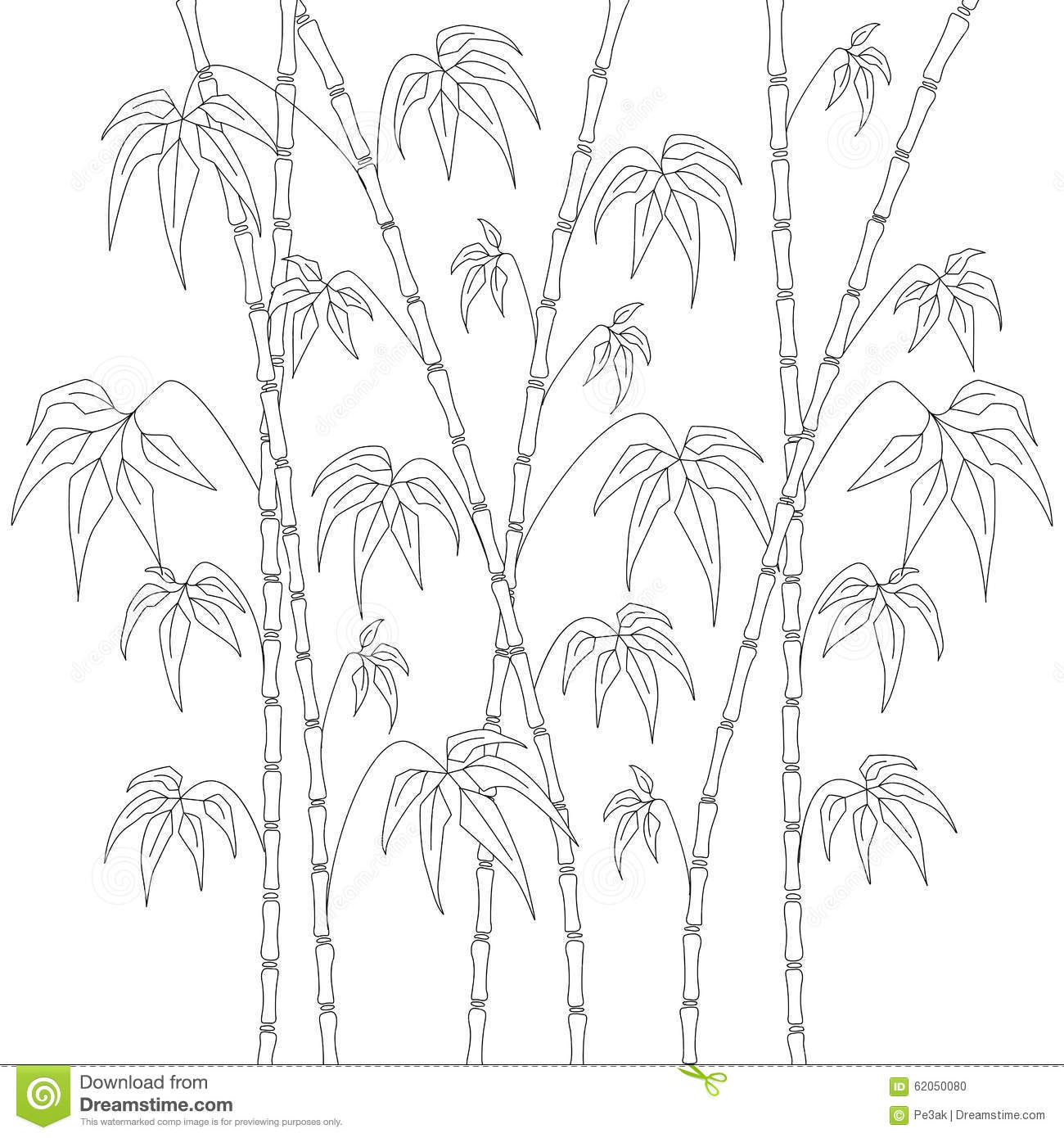 Coloring Pages Bamboo Coloring Pages bamboo coloring pages eassume com eassume