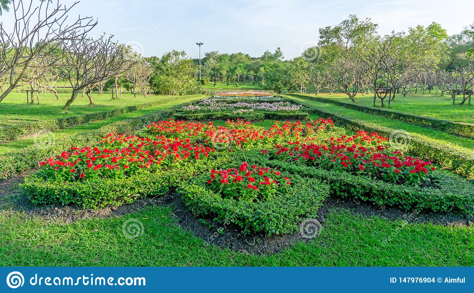 Pattern of English formal garden style, red Madagascar periwinkle and colorful flowering plant blooming in a green leaf