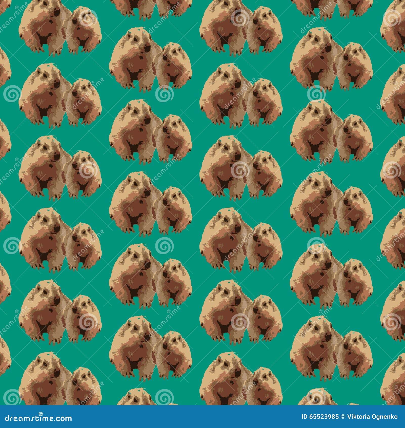 Pattern groundhog