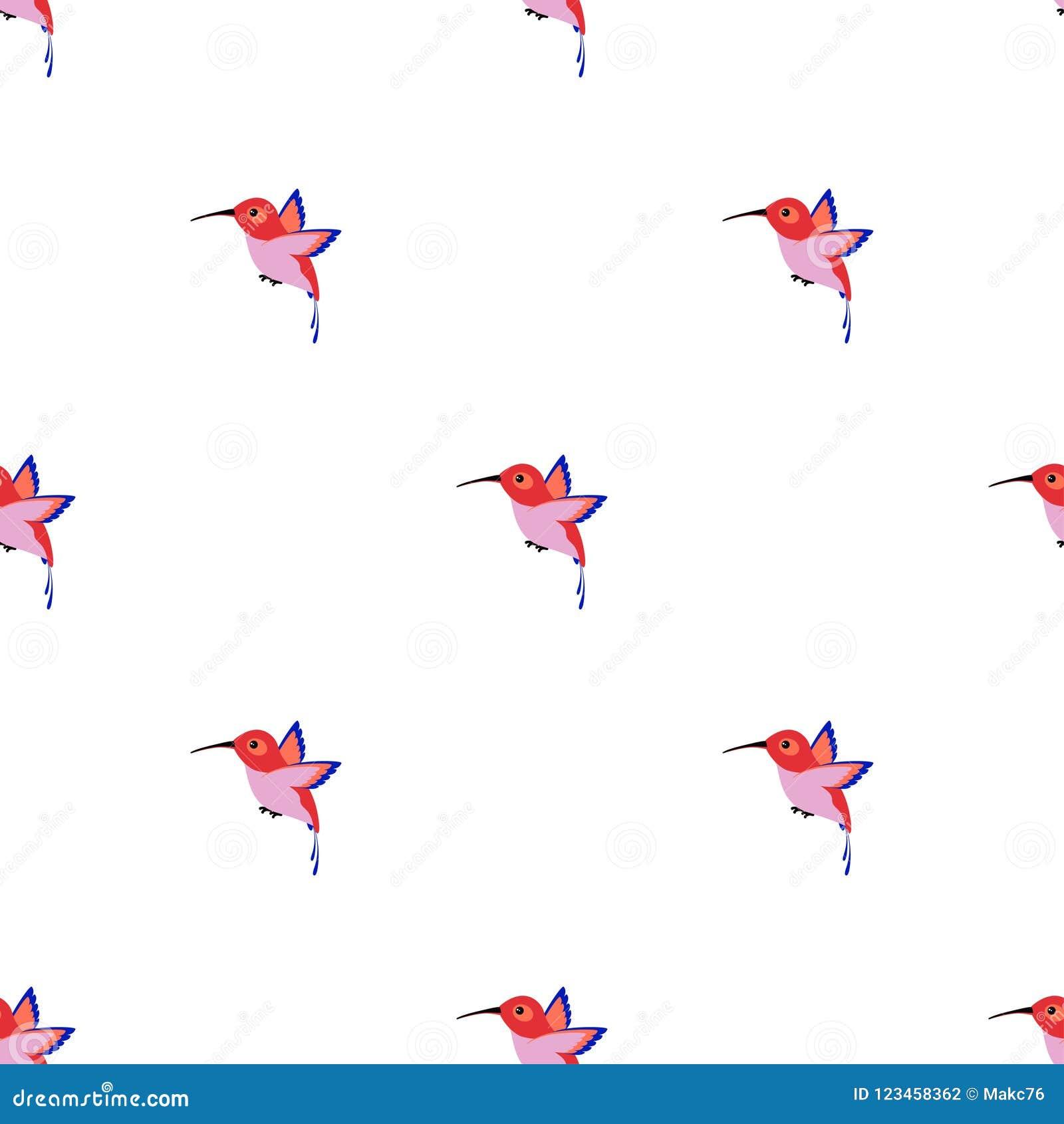 pattern with hummingbird stock vector illustration of flying