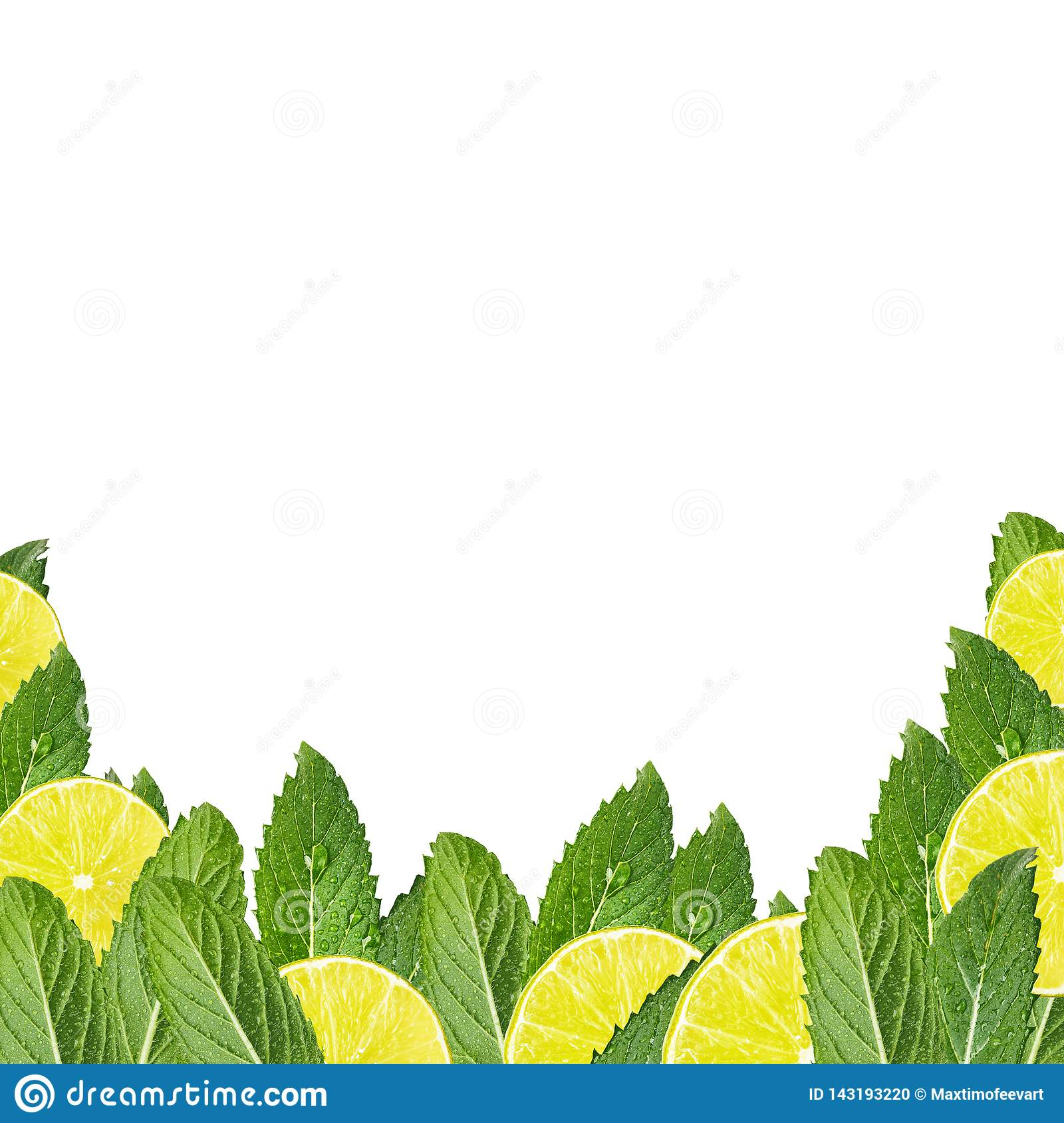 Pattern of mint leaves and lemon slices