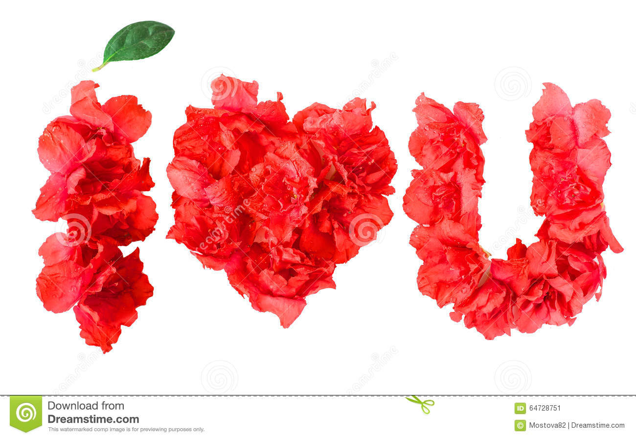 Pattern Of Red Azalea Flowers In Form Of I Love You Stock Image