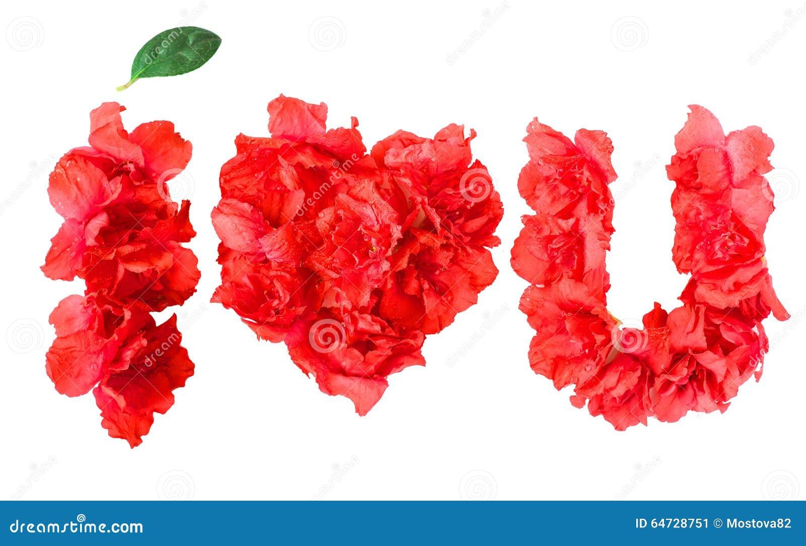 Pattern Of Red Azalea Flowers In Form I LOVE YOU
