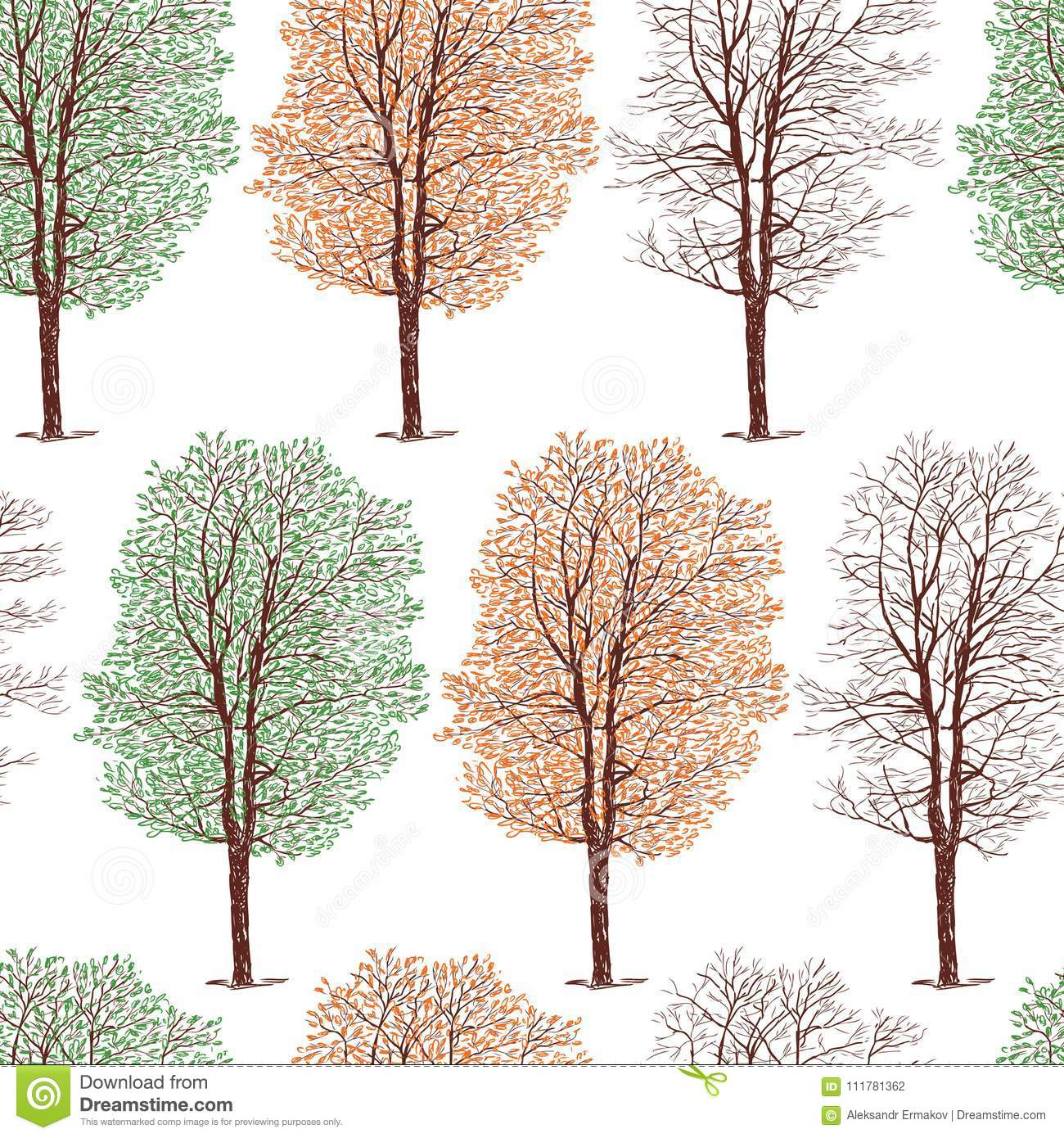 Pattern of the trees in the different seasons