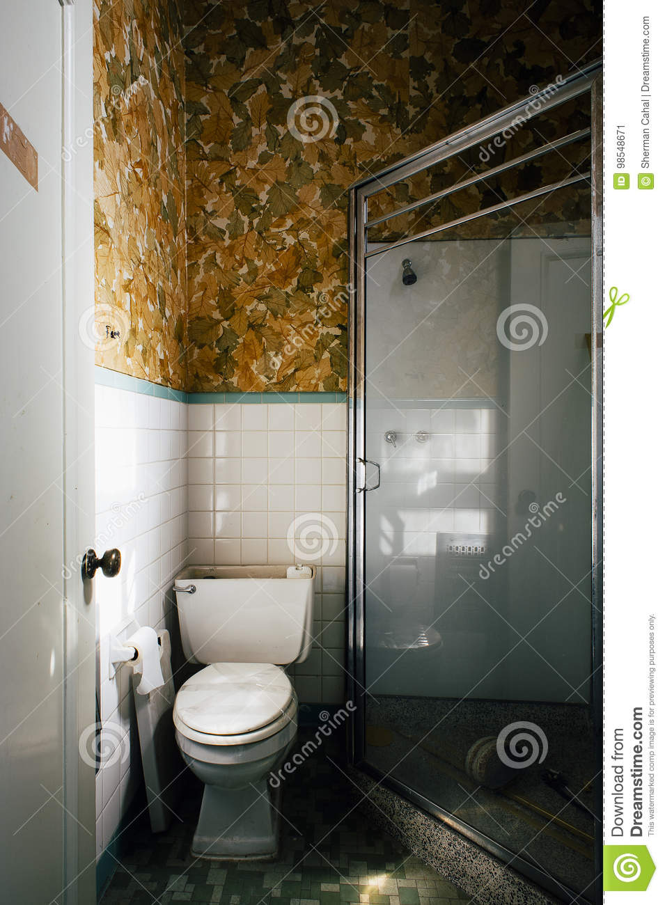 Pattern Wallpaper In Clean Bathroom With Toilet And Shower