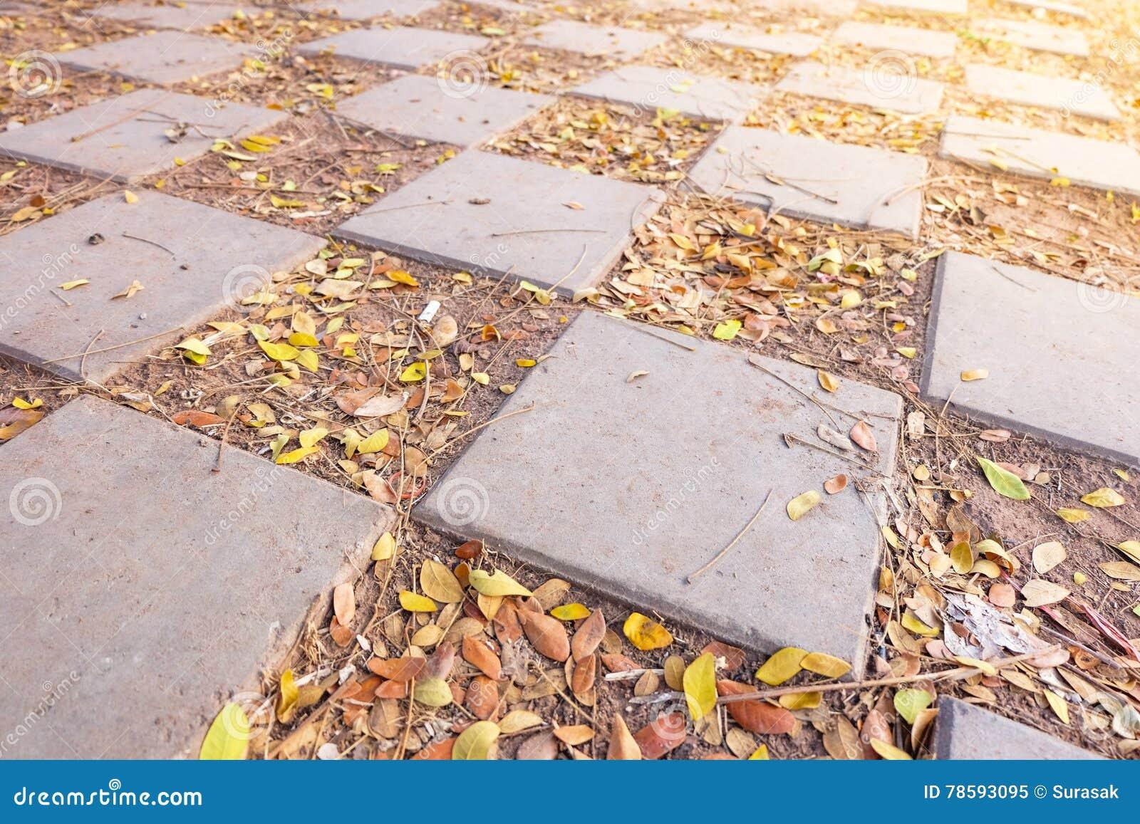 Patterned brick flooring.