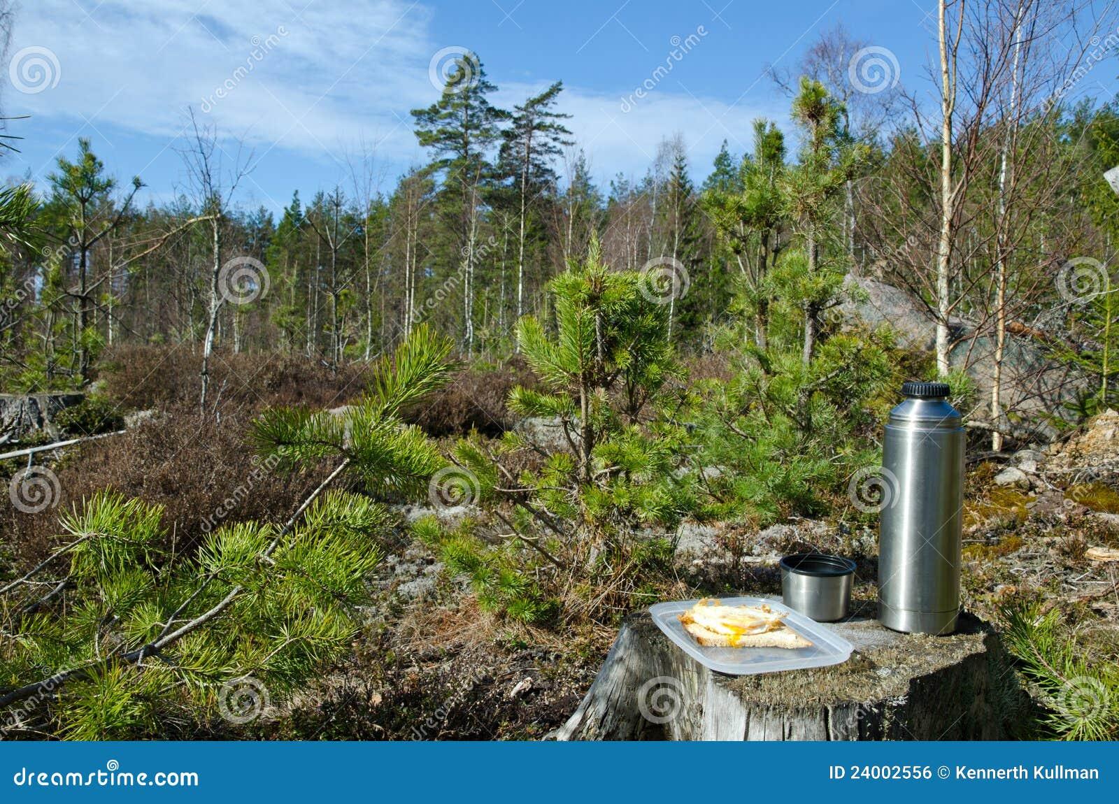 Pause-café dans la forêt