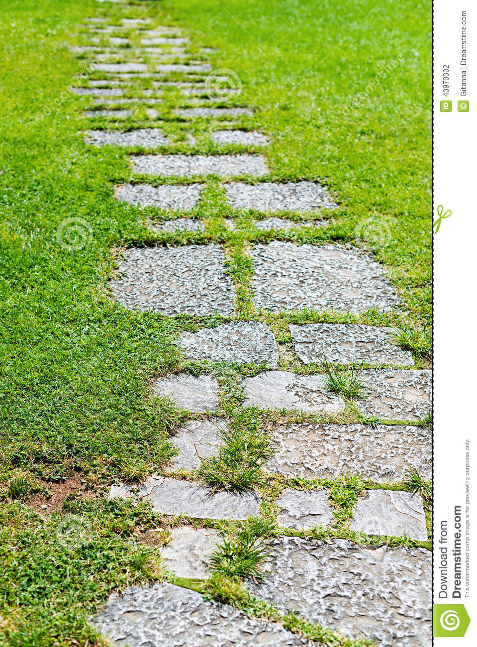 Paved Garden Stock Photo Image 43970302