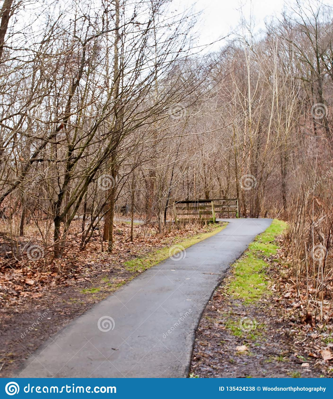 A paved path leading to a wooden bridge in Frick Park