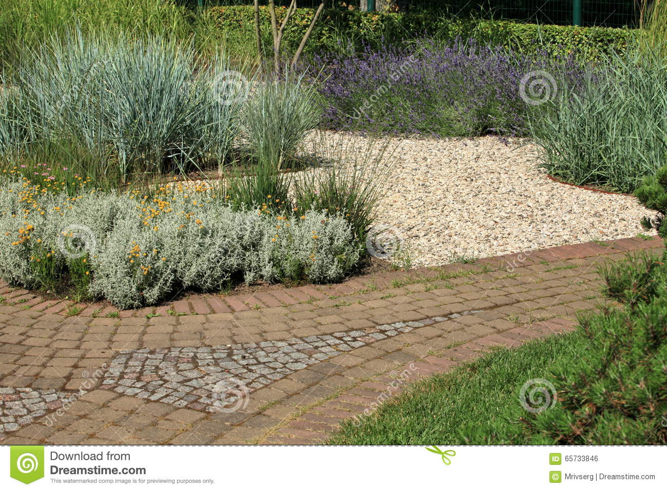 Paved Walking Path In The Park Stock Photo - Image of paved ...