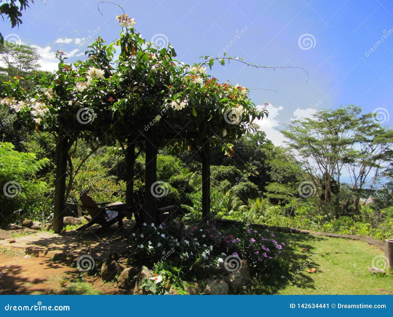 Pavillion met bloemen op de Seychellen