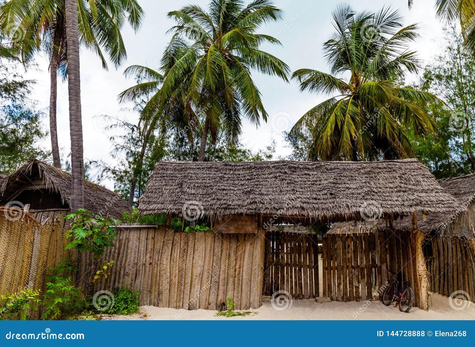Pavillon mit Strohdach und grünen Palmen herum